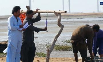 ADB Energy Assistance Works. Just Ask Pakistani Fisherman Ismatullah Mangi