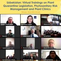 Virtual Training on Plant  Quarantine Legislation, Phytosanitary Risk  Management and Plant Clinics: Uzbekistan